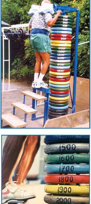 Standing Calf Raise (plates weights)